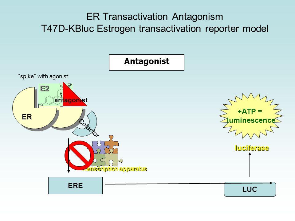 Antagonist ER ERE LUC +ATP = luminescence CofactorE2 Transcription apparatus antagonist luciferase ER Transactivation Antagonism T47D-KBluc Estrogen transactivation reporter model spike with agonist