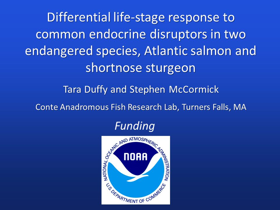 Tara Duffy and Stephen McCormick Conte Anadromous Fish Research Lab, Turners Falls, MA Differential life-stage response to common endocrine disruptors in two endangered species, Atlantic salmon and shortnose sturgeon Funding