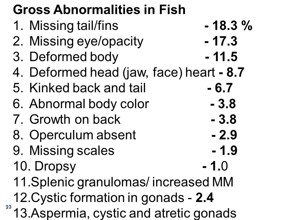 Gross Abnormalities in Fish 1.Missing tail/fins - 18.3 % 2.Missing eye/opacity - 17.3 3.Deformed body - 11.5 4.Deformed head (jaw, face) heart - 8.7 5
