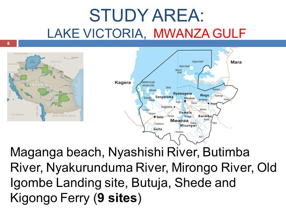 STUDY AREA: LAKE VICTORIA, MWANZA GULF 8 Maganga beach, Nyashishi River, Butimba River, Nyakurunduma River, Mirongo River, Old Igombe Landing site, Butuja, Shede and Kigongo Ferry (9 sites)