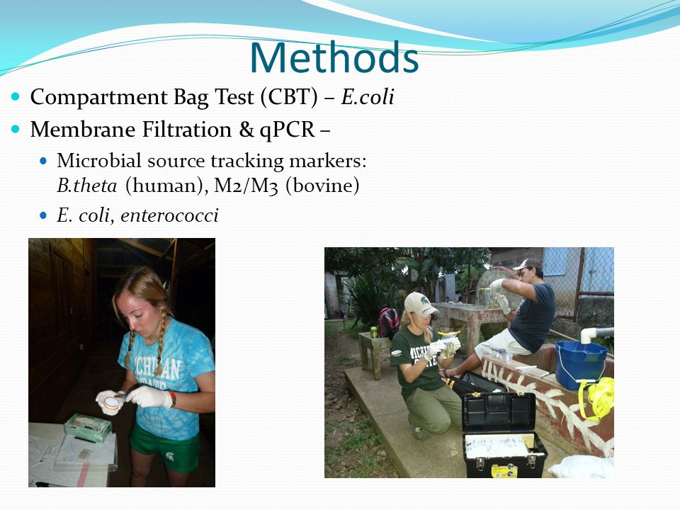 Methods Compartment Bag Test (CBT) – E.coli Membrane Filtration & qPCR – Microbial source tracking markers: B.theta (human), M2/M3 (bovine) E.