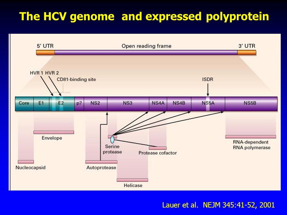 Variability of HCV 6 major genotypes more than 50 subtypes Quasispecies 5'UT CE1E2 p7 NS2 NS4B NS3 NS5A NS5B 3' Hypervariable region - HVR1 384 410 cross-reactivity (%) R9QTTVVGGSQSHTVRGLTSLFSPGASQN60 F78QTHTTGGGAGHQAHSLTGLFSPGAKQN70 M122QTTTTGGSAHAVSSLTGLFSPGSKQN44 G31TTHTVGGSVARQVHSLTGLFSPGPQQK77 H1QTHTTGGVVGHATSGLTSLFSPGPSQK42 D6QTTTTGGQVSHATHGLTGLFSLGPQQK66