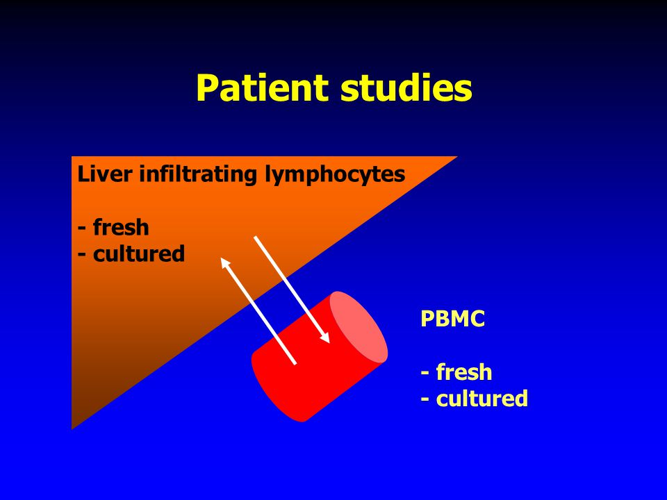 Study of the immune response Patient studies Animal models –chimpanzee (ethics, = human) –mouse models HLA-A2 transgenic mouse HCV transgenic mice huPBL-SCID mouse, Trimera mouse, huHepatocyte-uPA-SCID mouse,..