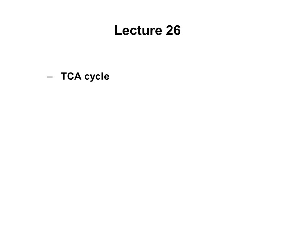Lecture 26 –TCA cycle