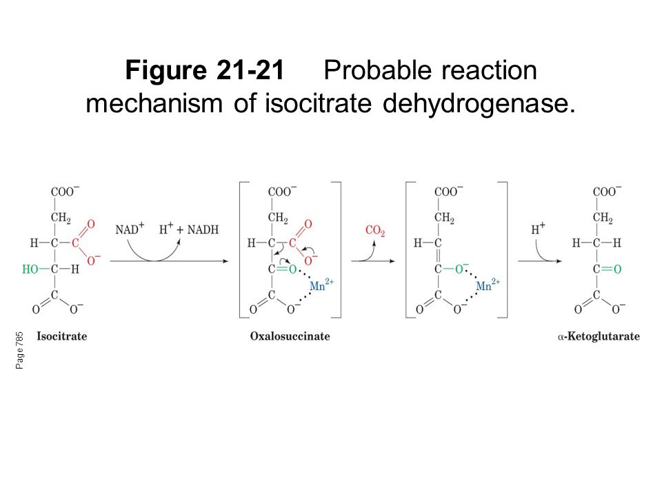 Figure 21-21Probable reaction mechanism of isocitrate dehydrogenase. Page 785