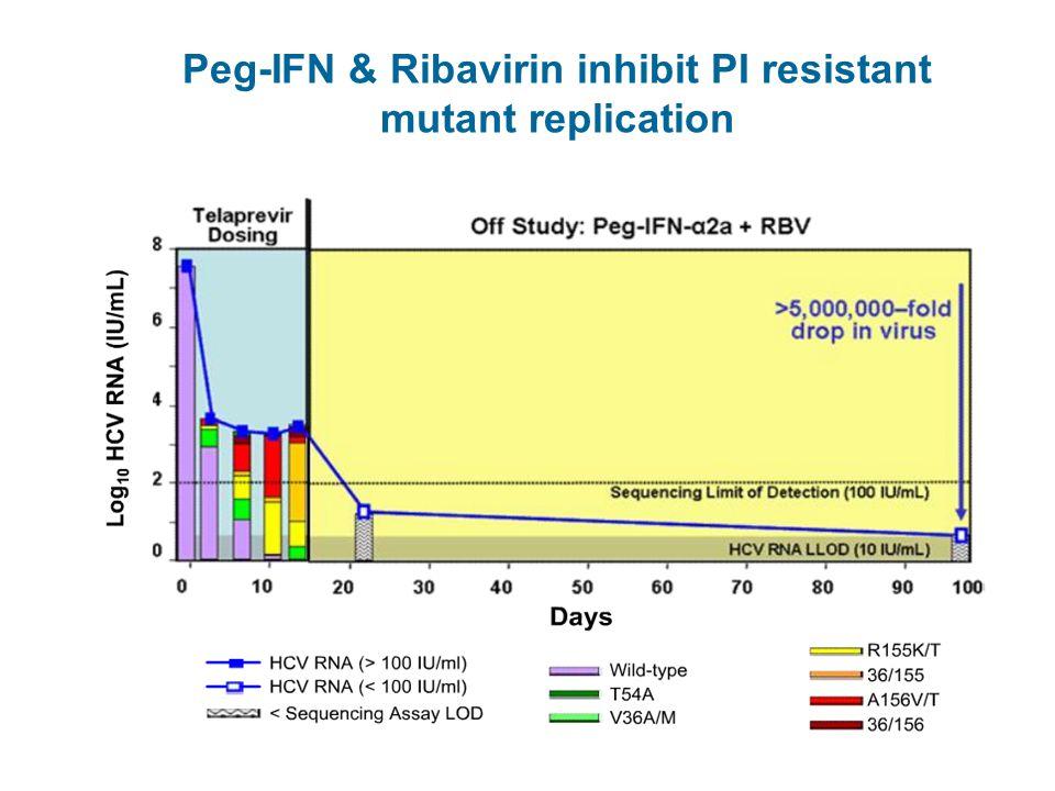 Peg-IFN & Ribavirin inhibit PI resistant mutant replication Kieffer TL, et al. AASLD 2006 Peg-IFN – Pegylated interferon, PI – Protease inhibitor