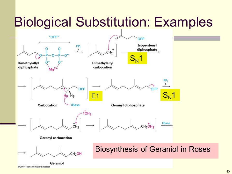 Biological Substitution: Examples 45 Biosynthesis of Geraniol in Roses SN1SN1 SN1SN1 E1