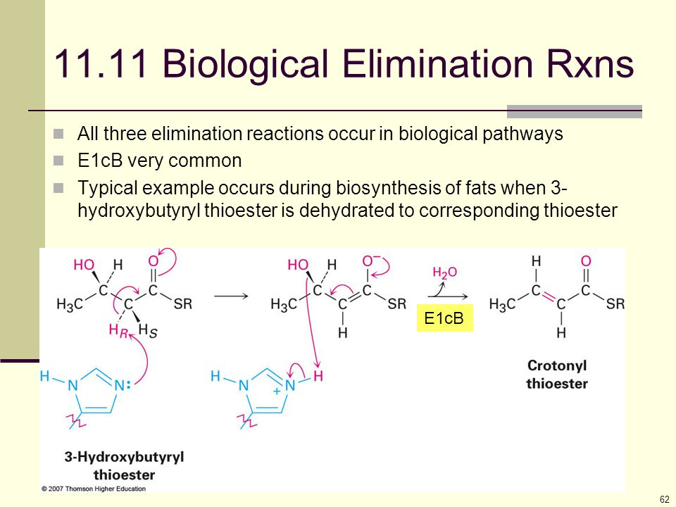 62 11.11 Biological Elimination Rxns All three elimination reactions occur in biological pathways E1cB very common Typical example occurs during biosy