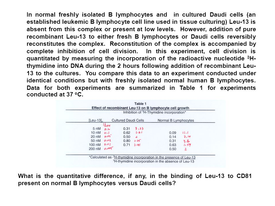 In normal freshly isolated B lymphocytes and in cultured Daudi cells (an established leukemic B lymphocyte cell line used in tissue culturing) Leu-13 is absent from this complex or present at low levels.