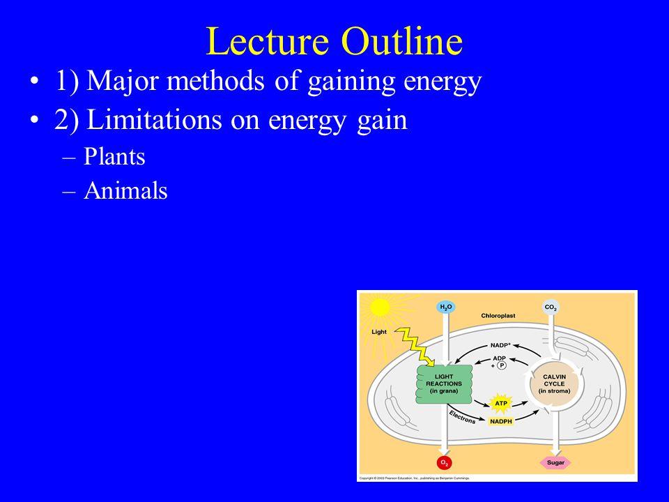 Plants Light curve….Photosynthetic rate vs.light (photon flux density).