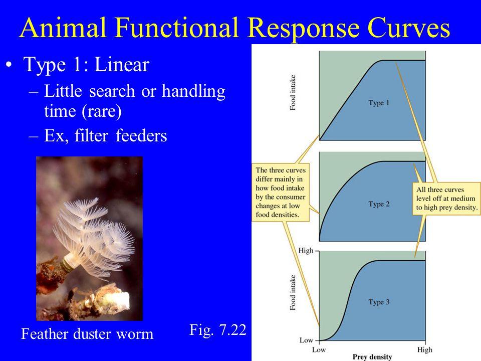 Values calculated for prey in lab Daphnia (water fleas), damselfly larvae, midge larvae Optimal Foraging Theory midge damselfly water flea