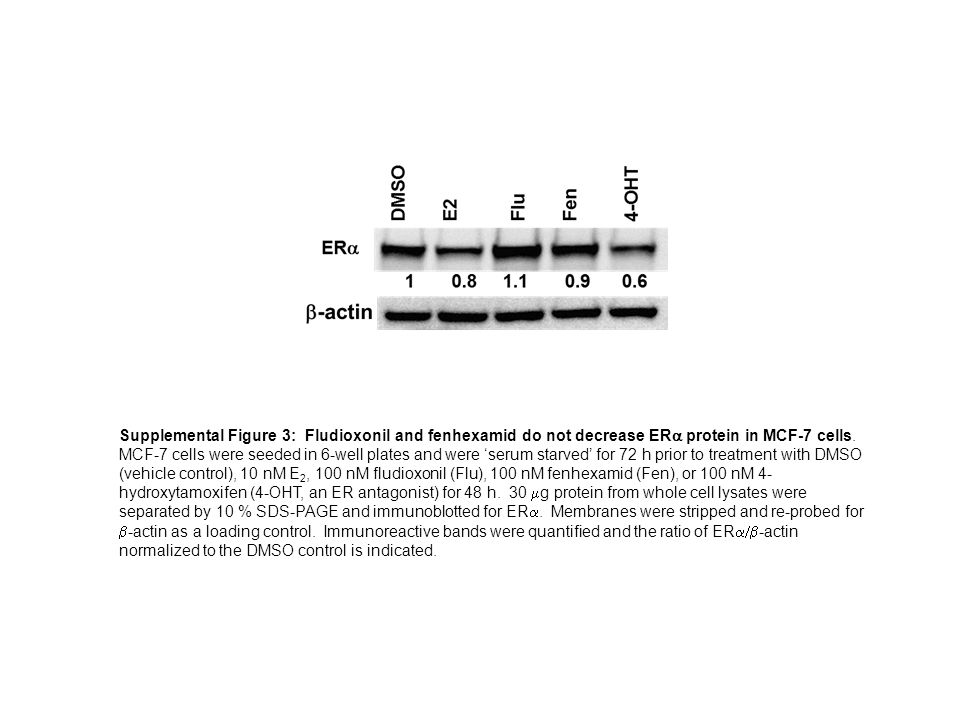Supplemental Figure 3: Fludioxonil and fenhexamid do not decrease ER  protein in MCF-7 cells.