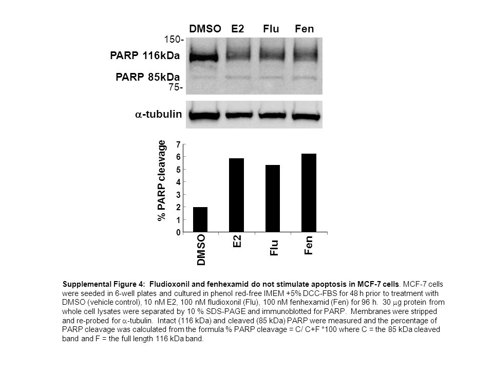 Supplemental Figure 5: Fludioxonil and fenhexamid have antiestrogenic activity in MCF-7 cells.