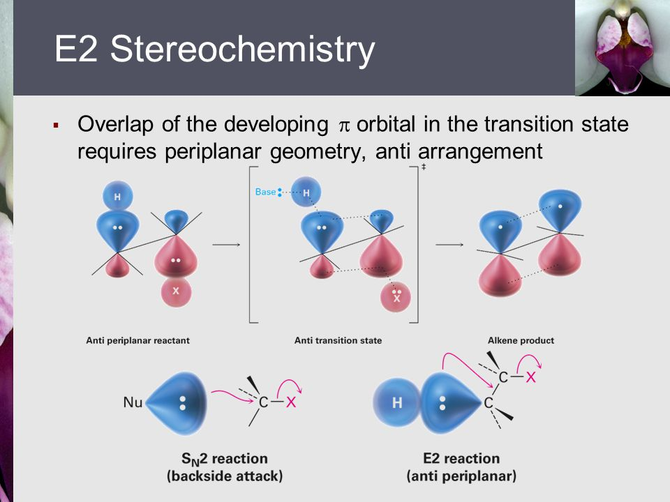  Overlap of the developing  orbital in the transition state requires periplanar geometry, anti arrangement E2 Stereochemistry