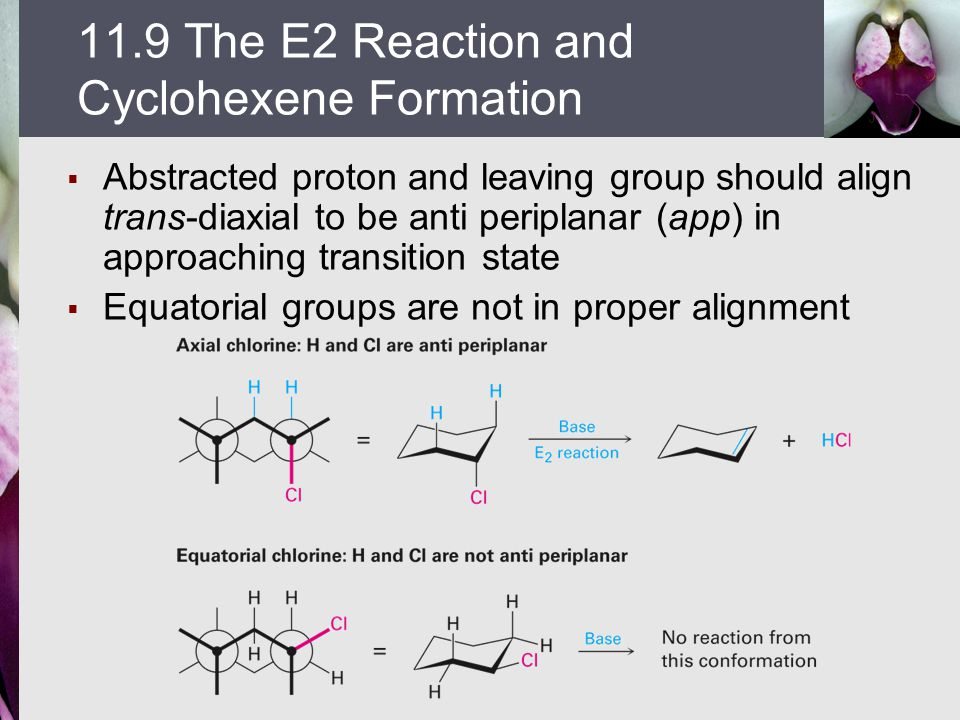  Abstracted proton and leaving group should align trans-diaxial to be anti periplanar (app) in approaching transition state  Equatorial groups are n