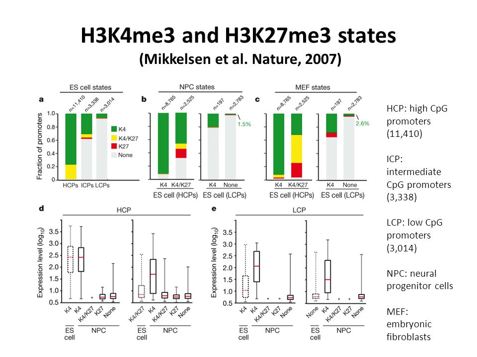 H3K4me3 and H3K27me3 states (Mikkelsen et al. Nature, 2007) HCP: high CpG promoters (11,410) ICP: intermediate CpG promoters (3,338) LCP: low CpG prom