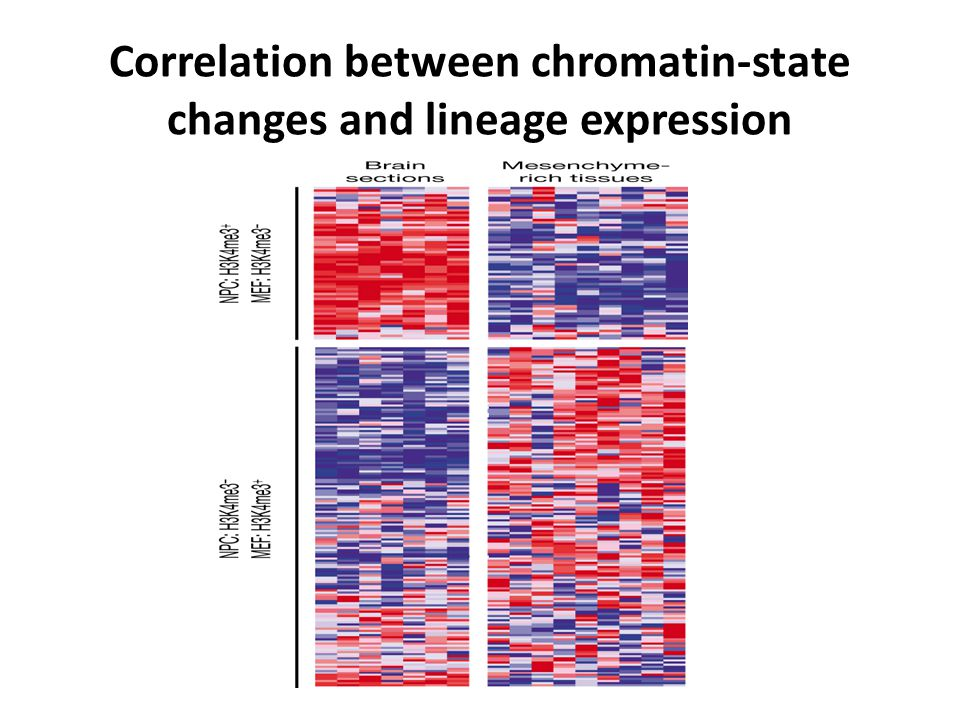 Correlation between chromatin-state changes and lineage expression