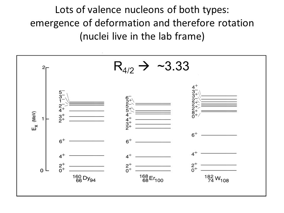Lots of valence nucleons of both types: emergence of deformation and therefore rotation (nuclei live in the lab frame) R 4/2  ~3.33