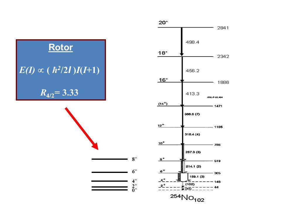 0+0+ 2+2+ 4+4+ 6+6+ 8+8+ Rotor E(I)  ( ħ 2 /2 I )I(I+1) R 4/2 = 3.33 Deformed nuclei – rotational spectra