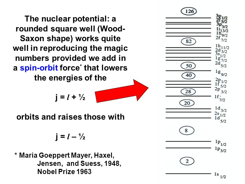 The nuclear potential: a rounded square well (Wood- Saxon shape) works quite well in reproducing the magic numbers provided we add in a spin-orbit force * that lowers the energies of the j = l + ½ orbits and raises those with j = l – ½ * Maria Goeppert Mayer, Haxel, Jensen, and Suess, 1948, Nobel Prize 1963