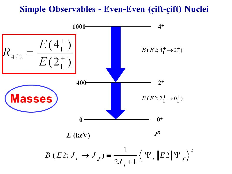 10004+4+ 2+2+ 0 400 0+0+ E (keV) JπJπ Simple Observables - Even-Even (cift-cift) Nuclei.. Masses