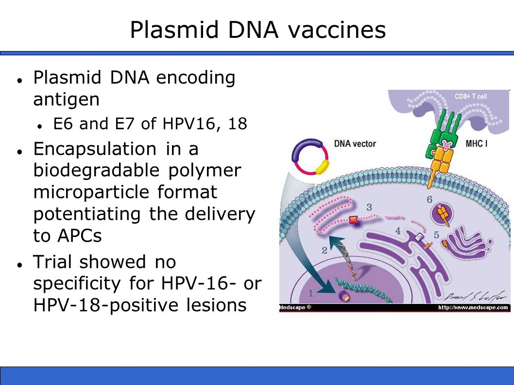 Plasmid DNA vaccines Plasmid DNA encoding antigen E6 and E7 of HPV16, 18 Encapsulation in a biodegradable polymer microparticle format potentiating the delivery to APCs Trial showed no specificity for HPV-16- or HPV-18-positive lesions