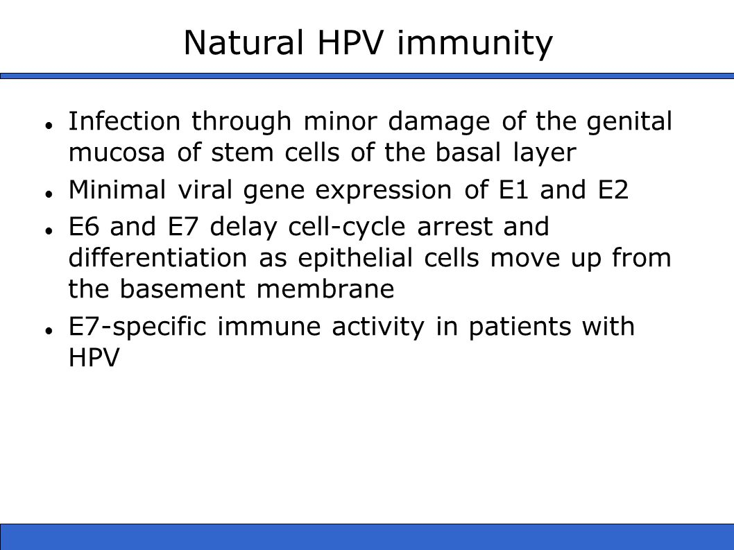 Natural HPV immunity Infection through minor damage of the genital mucosa of stem cells of the basal layer Minimal viral gene expression of E1 and E2 E6 and E7 delay cell-cycle arrest and differentiation as epithelial cells move up from the basement membrane E7-specific immune activity in patients with HPV