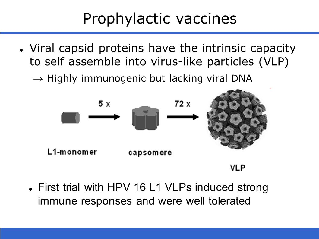 Prophylactic vaccines Viral capsid proteins have the intrinsic capacity to self assemble into virus-like particles (VLP) → Highly immunogenic but lacking viral DNA First trial with HPV 16 L1 VLPs induced strong immune responses and were well tolerated