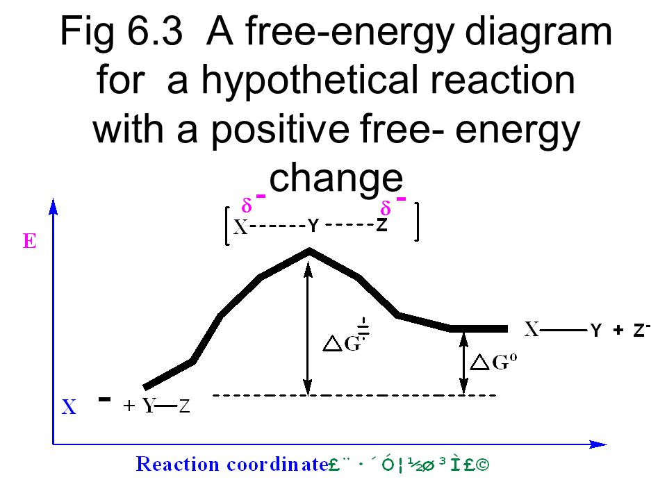 Fig 6.6 A potential energy diagram for the reaction of methyl chloride with hydroxide ion at 60 o C