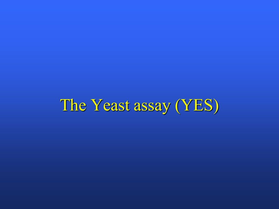 The Yeast assay (YES)