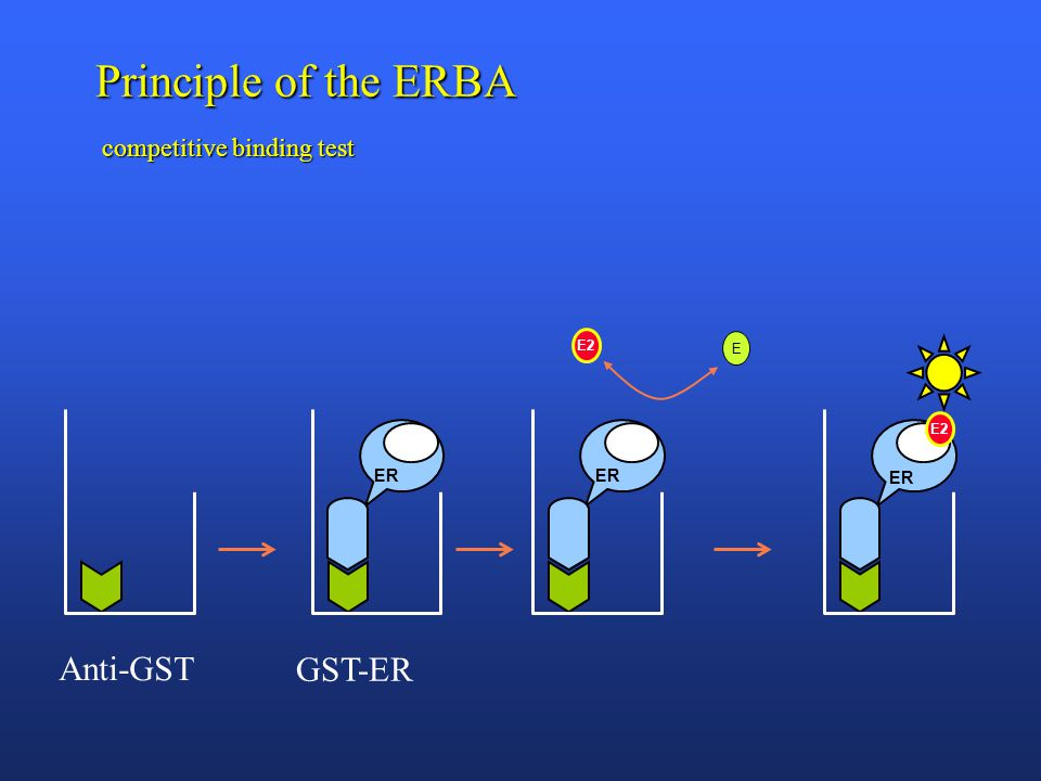Principle of the ERBA competitive binding test E E2 ER E2 Anti-GST GST-ER