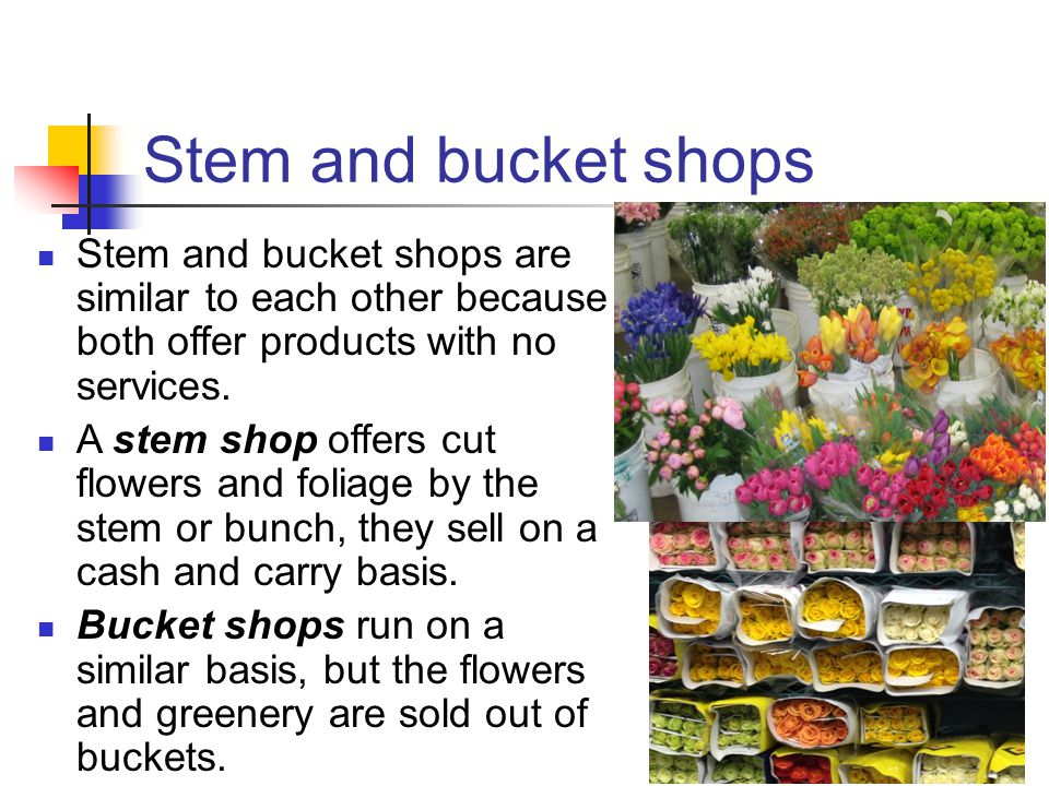 Stem and bucket shops Stem and bucket shops are similar to each other because both offer products with no services.