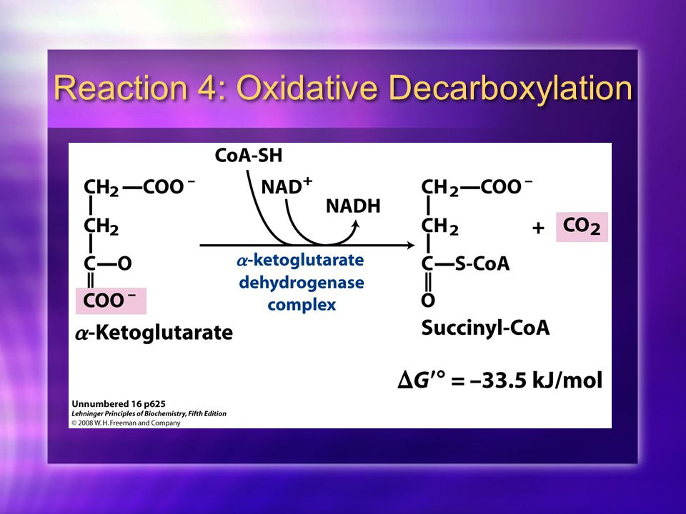 Reaction 4: Oxidative Decarboxylation