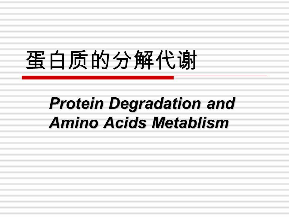 蛋白质的分解代谢 Protein Degradation and Amino Acids Metablism