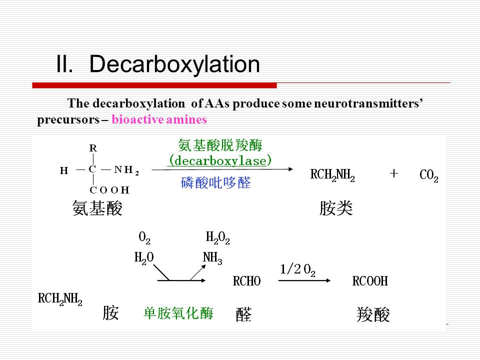 II. Decarboxylation The decarboxylation of AAs produce some neurotransmitters' precursors – bioactive amines