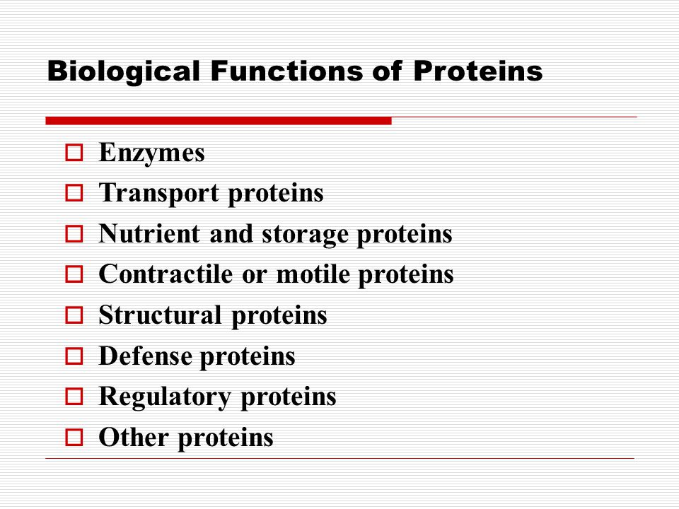 Biological Functions of Proteins  Enzymes  Transport proteins  Nutrient and storage proteins  Contractile or motile proteins  Structural proteins  Defense proteins  Regulatory proteins  Other proteins