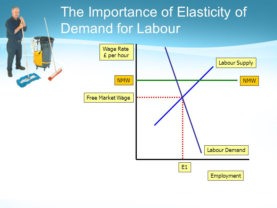 The Importance of Elasticity of Demand for Labour Employment Wage Rate £ per hour Labour Demand Labour Supply Free Market Wage E1 NMW