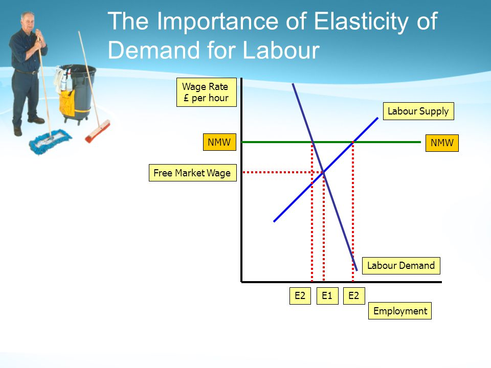 The Importance of Elasticity of Demand for Labour Employment Wage Rate £ per hour Labour Demand Labour Supply Free Market Wage E1 NMW E2