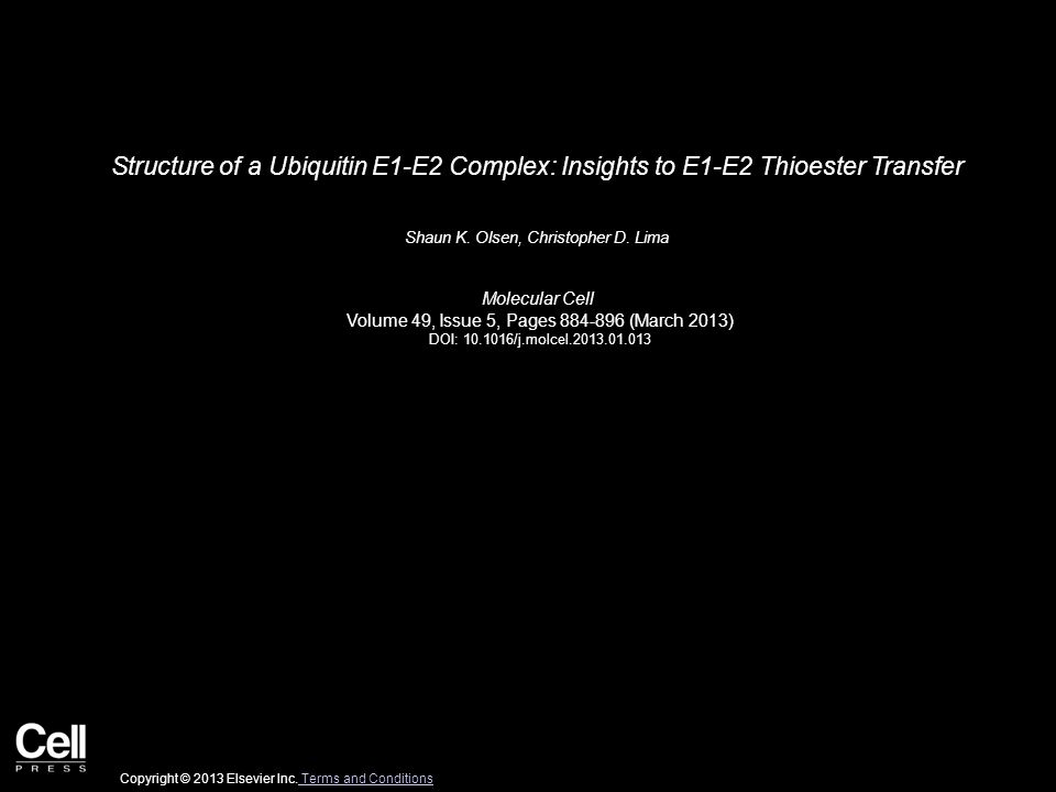 Structure of a Ubiquitin E1-E2 Complex: Insights to E1-E2 Thioester Transfer Shaun K.