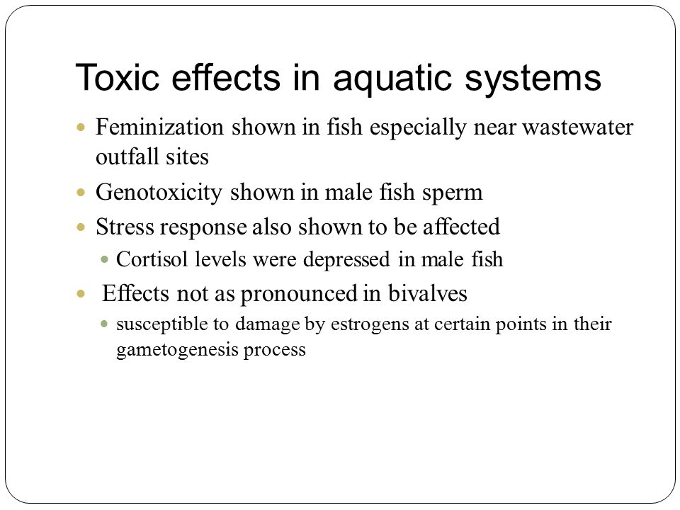 Toxic effects in aquatic systems Feminization shown in fish especially near wastewater outfall sites Genotoxicity shown in male fish sperm Stress response also shown to be affected Cortisol levels were depressed in male fish Effects not as pronounced in bivalves susceptible to damage by estrogens at certain points in their gametogenesis process