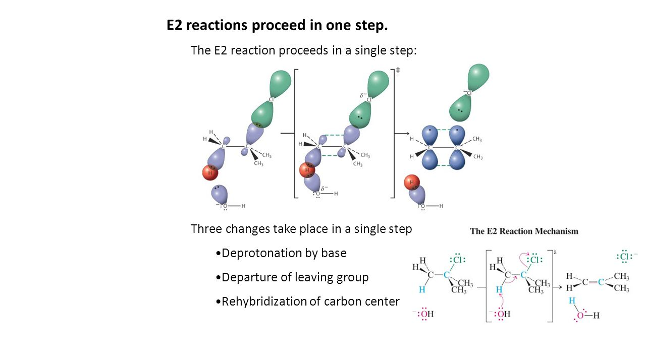 Experiments elucidate the detailed structure of the E2 transition state.