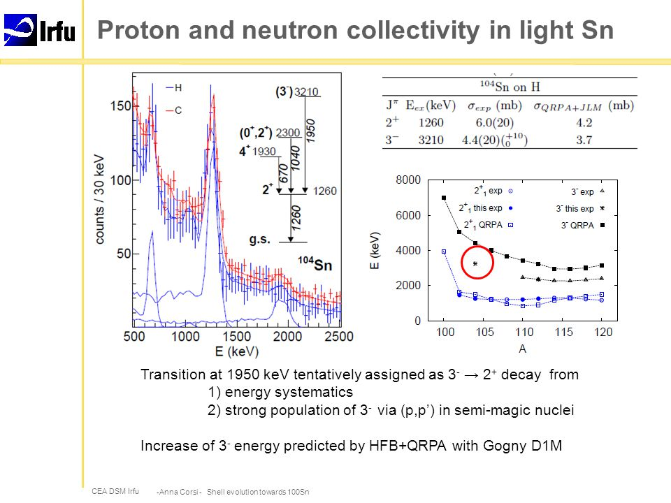 CEA DSM Irfu Proton and neutron collectivity in light Sn -Anna Corsi - Shell evolution towards 100Sn  Asymmetric M p curve as in Ansari and Ring, PRC 74, 054313 (2006)  (p,p') cross section dominated by neutron contribution  +20-30% in M n to reproduce experimental (p,p') cross section HFB+QRPA with Gogny D1M interaction, no model space limitation M.Martini, S.Peru and M.Dupuis, PRC 83, 034309 (2011) M p M n