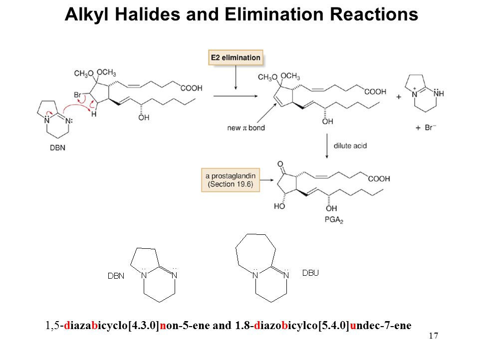 17 Alkyl Halides and Elimination Reactions 1,5-diazabicyclo[4.3.0]non-5-ene and 1.8-diazobicylco[5.4.0]undec-7-ene