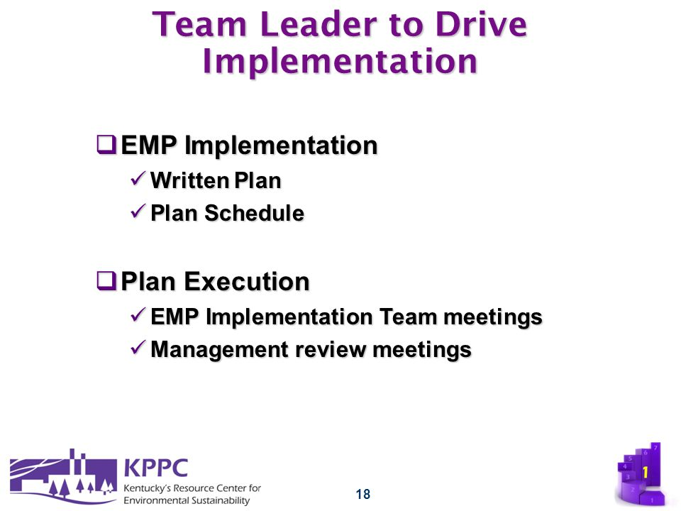 18 Team Leader to Drive Implementation  EMP Implementation Written Plan Written Plan Plan Schedule Plan Schedule  Plan Execution EMP Implementation