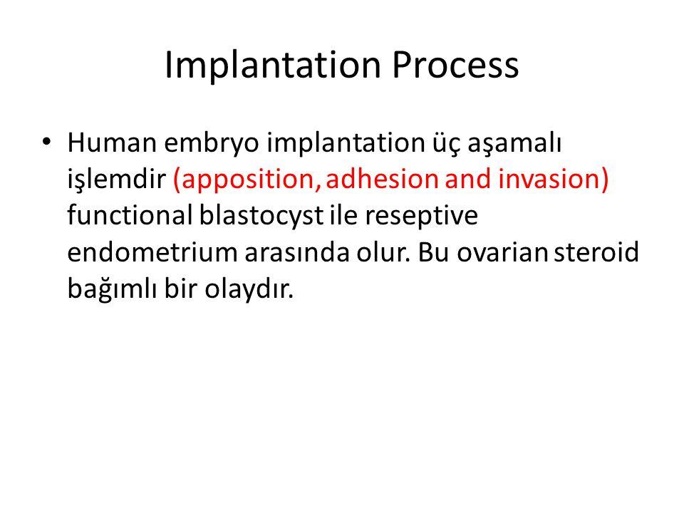 Implantation Process Human embryo implantation üç aşamalı işlemdir (apposition, adhesion and invasion) functional blastocyst ile reseptive endometrium