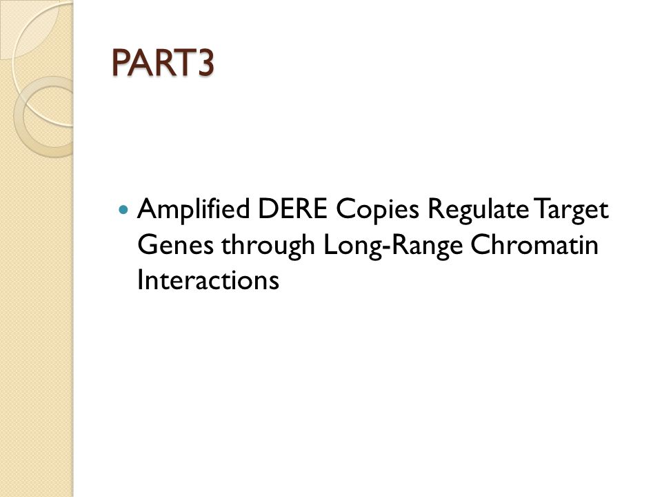 PART3 Amplified DERE Copies Regulate Target Genes through Long-Range Chromatin Interactions