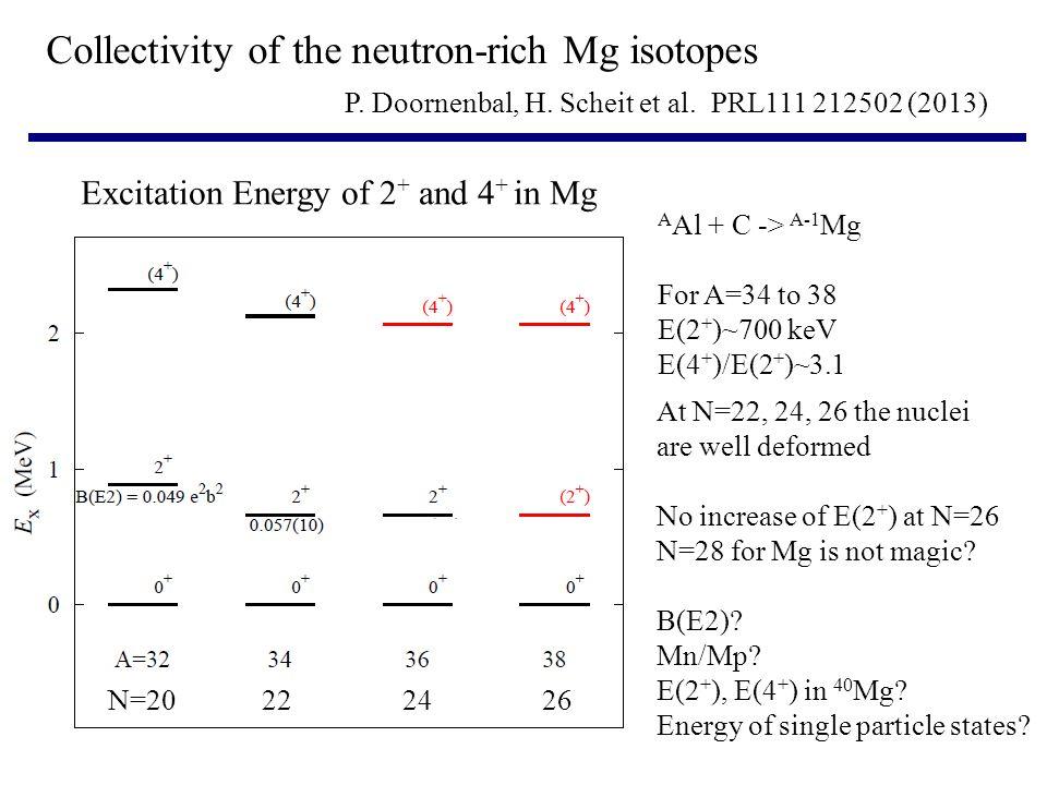 N=20222426 P.Doornenbal, H. Scheit et al.