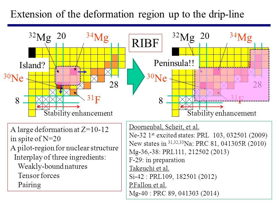 20 8 28 34 Mg 30 Ne 32 Mg 31 F Stability enhancement 20 8 28 34 Mg 30 Ne 32 Mg 31 F Stability enhancement Doornenbal, Scheit, et al.