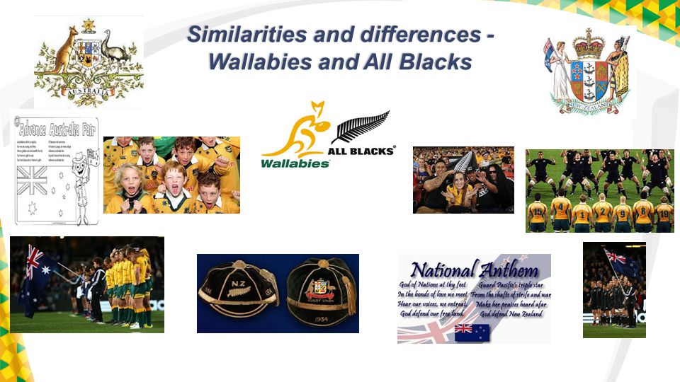 Similarities and differences - Wallabies and All Blacks