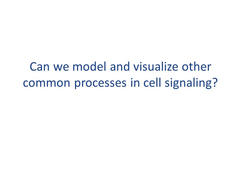 Can we model and visualize other common processes in cell signaling